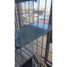 EXTRA LEVELS FOR RAT CAGES PERSPEX 2mm (For Rat Penthouse #828, Rat Mansion cage #300, Large flight cage #765) NOT FOR DELUXE PENTHOUSE